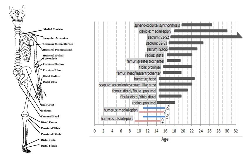 El crecimiento después de los 18 años - Página 3 Sidebyside