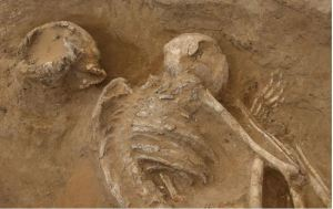 Egypt Neolithic Burials